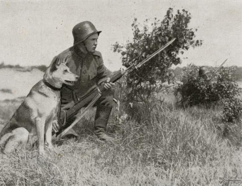 Lituanin border guards with Remington ? before WWII